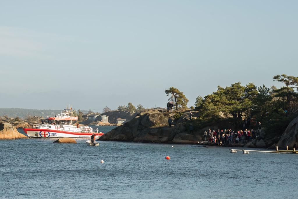 Skolebarna står på brygga, rett ved hvalen