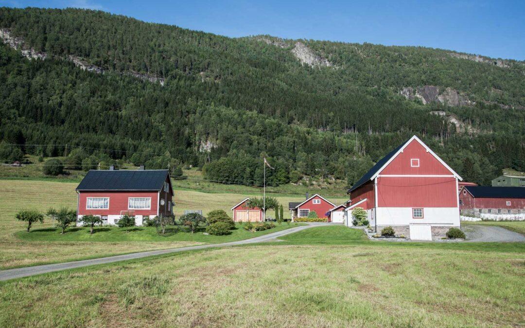 Besøk hos gamle kjente i Innvik