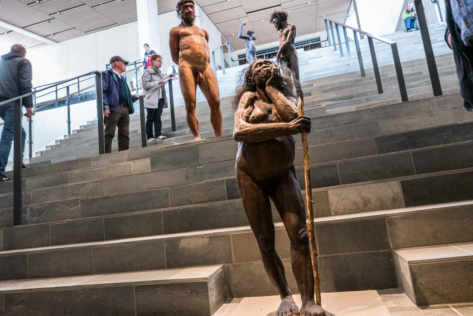 Modeller som viser de ulike utviklingstrinnene i menneskeheten står plassert i trappen. Foran står Hobiten, så Neandertaleren, og bak ham Homo Sapiens.