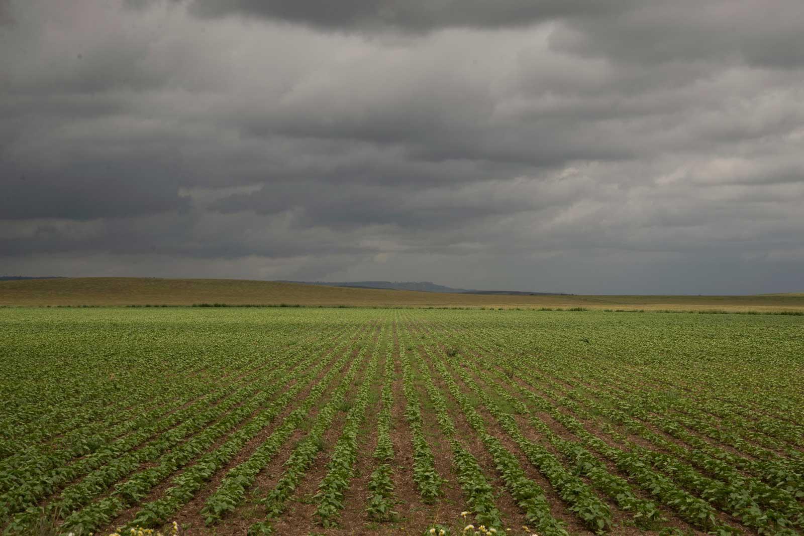 Store landbruksområder på De Andalusiske Sletter.