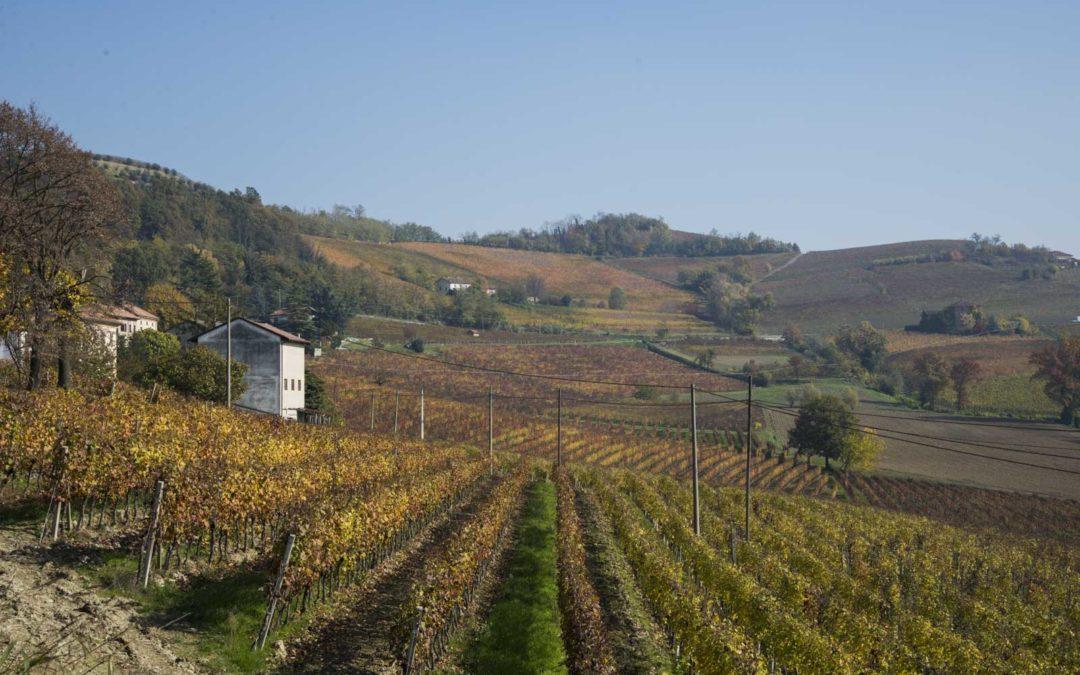 Vakre Piemonte